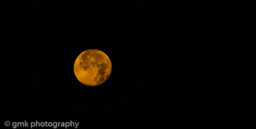 I love the moon, the moon loves me ...