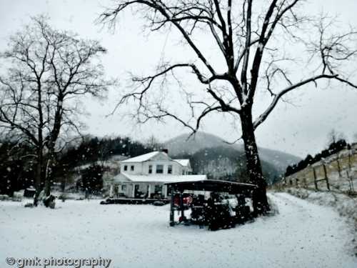A snowy day at the base of Clinch Mountain